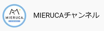 YouTube 「MIERUCA(ミエルカ)チャンネル」の特徴