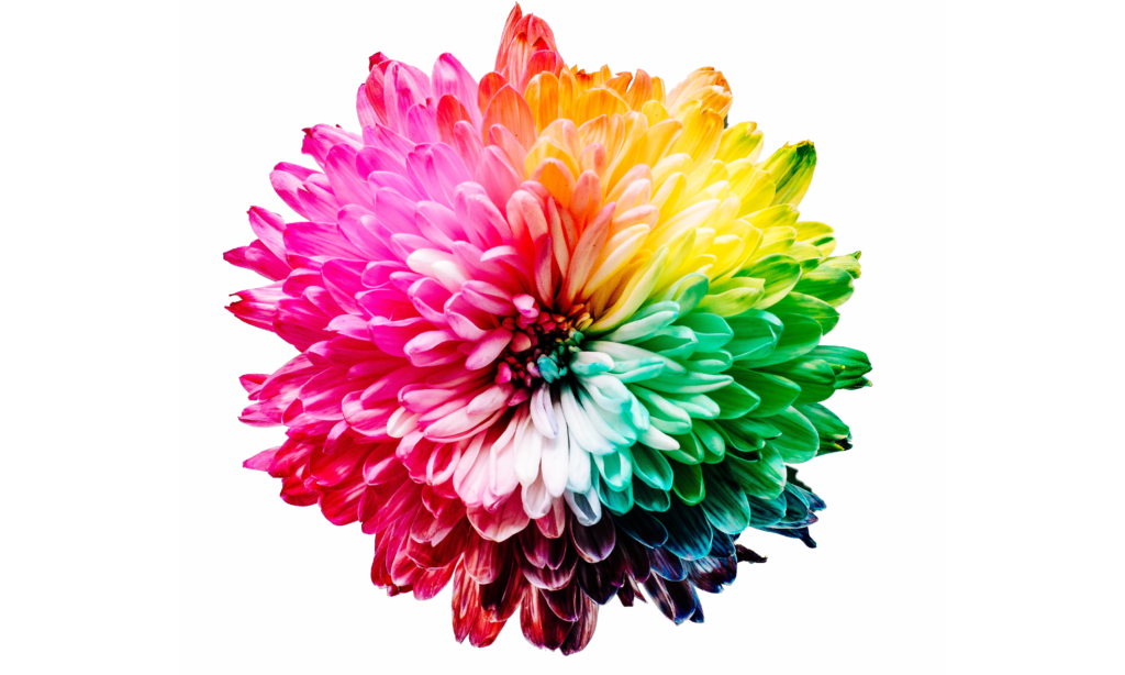 Webデザインと色彩心理学